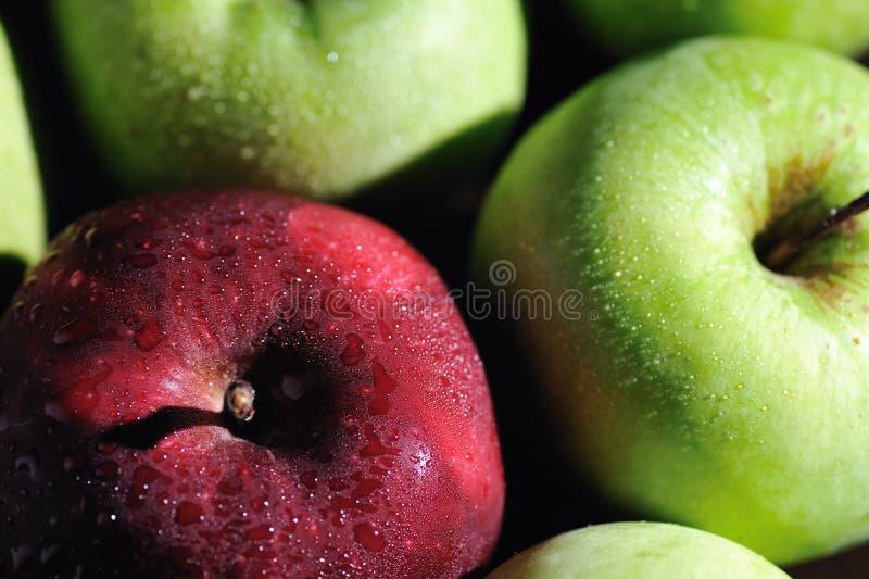 4 μήλα φρέσκα στοκ φωτογραφίες με δικαίωμα ελεύθερης χρήσης