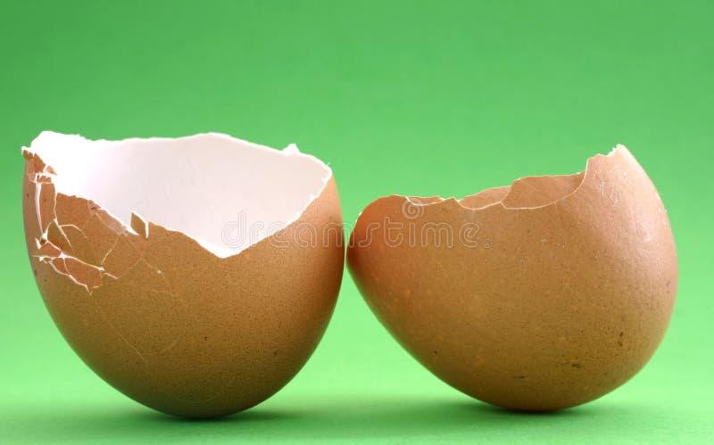 4 σπασμένο eggshell στοκ εικόνες με δικαίωμα ελεύθερης χρήσης