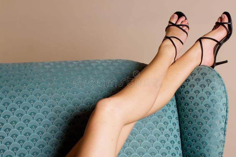 4 ноги стоковая фотография rf