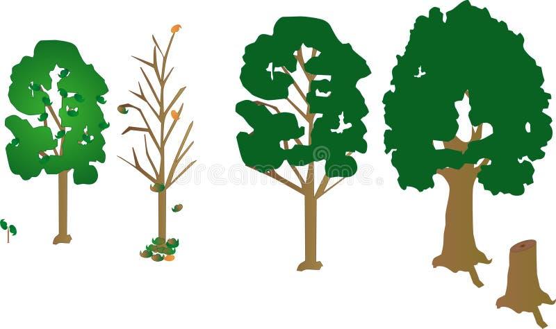 4 arbres, un arbre jeune et un joncteur réseau mort. accroissement d'arbre illustration stock