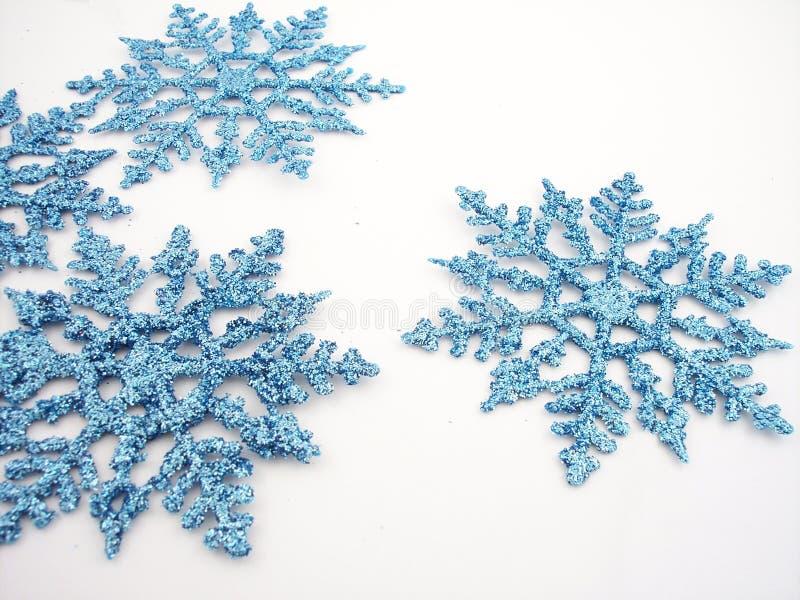 4 blåa snowflakes royaltyfri bild