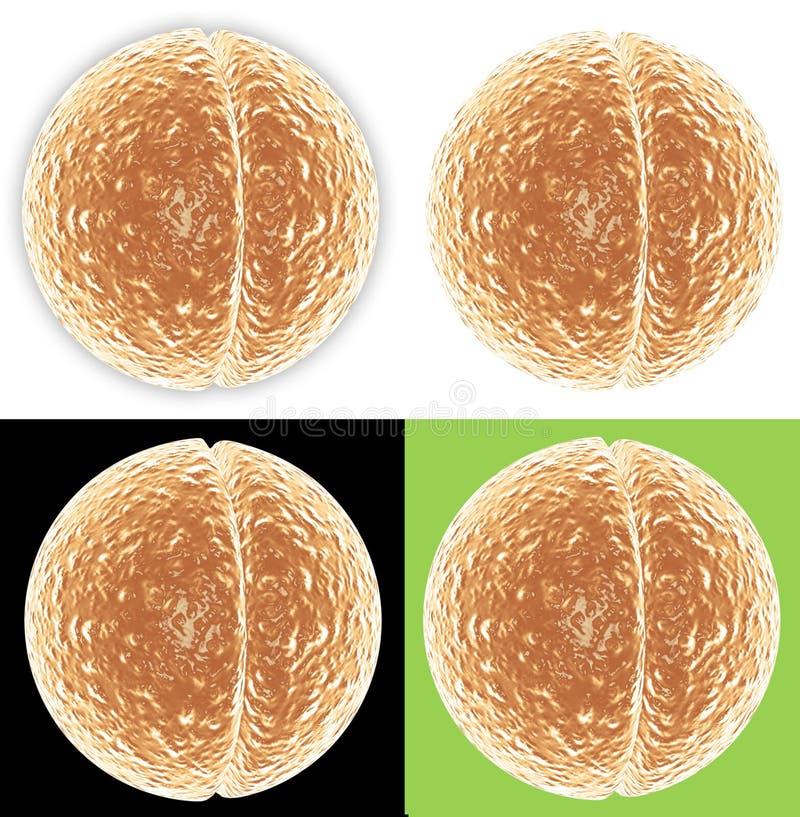 4 rozdzielającej wersji komórek royalty ilustracja