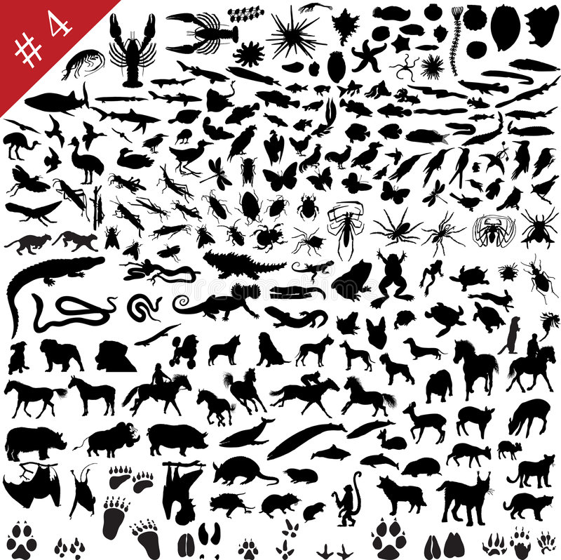 # 4 set of animal silhouettes stock illustration