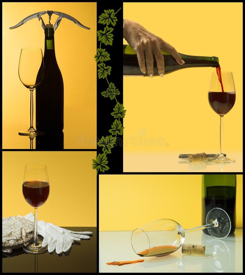 4 stappen van wijn royalty-vrije stock foto