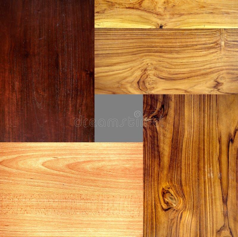 4 Unterschiedlicher Typ Holzbeschaffenheiten Lizenzfreies Stockbild