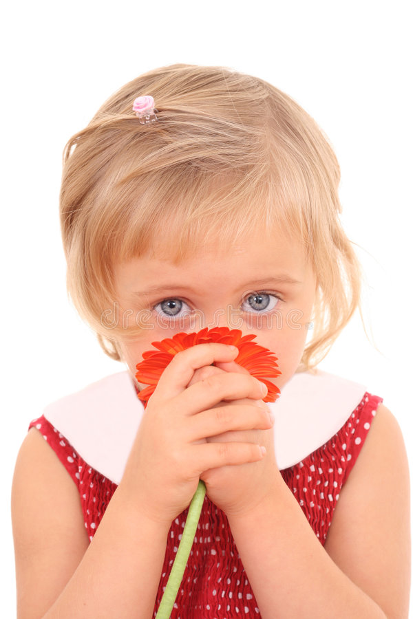 Download 4 years old girl stock image. Image of cute, cheerful - 3198243