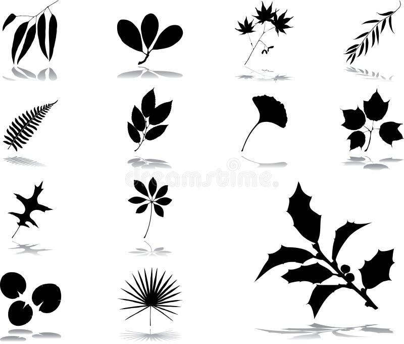 40 liści ikon ustalonych
