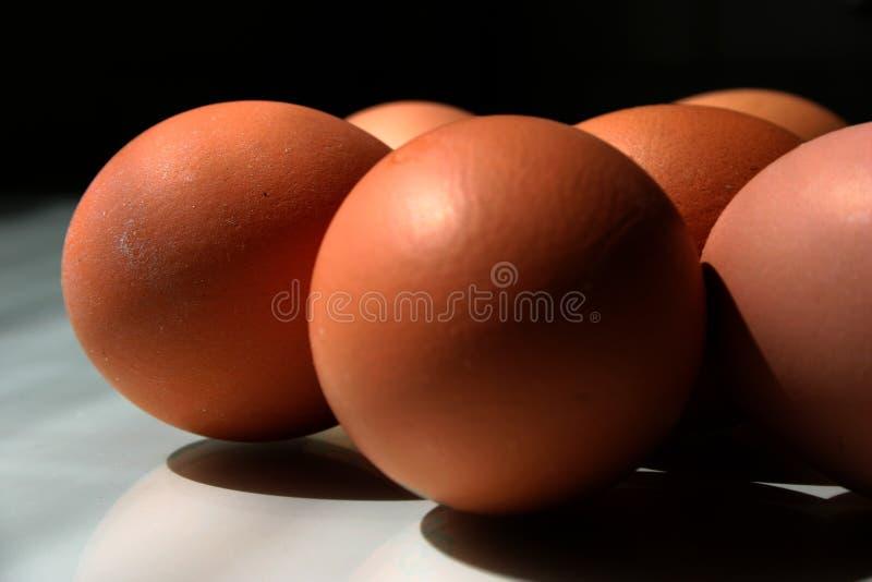 鸡蛋ii 免版税库存照片