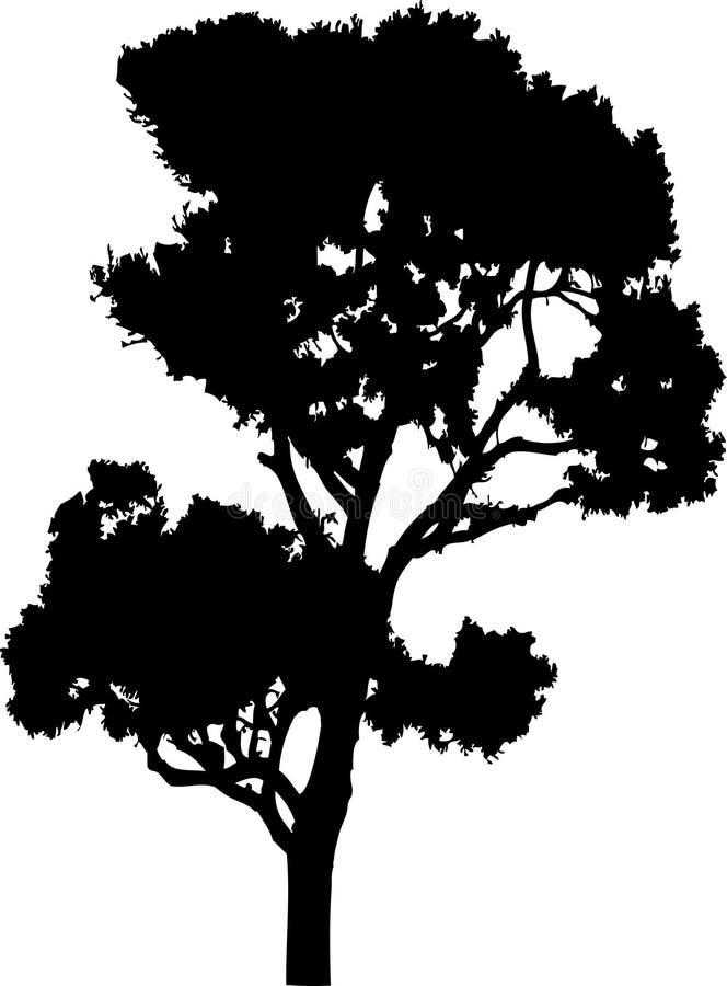 41查出的剪影结构树 向量例证