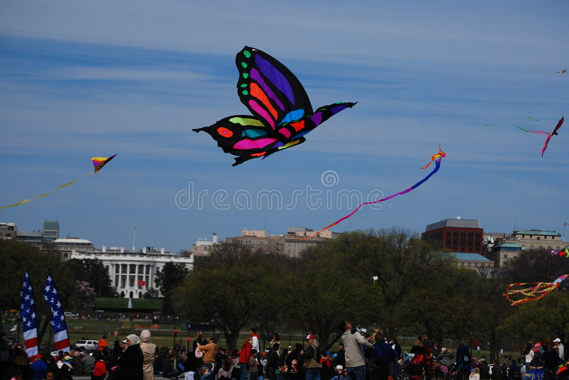 Download 42nd Annual Smithsonian Kite Festival 2008 II Editorial Photography - Image: 4739167