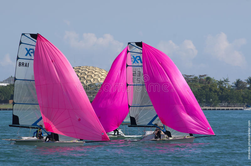 Download 49erFXs Downwind At ISAF World Cup Series In Miami Editorial Photo - Image: 29023506