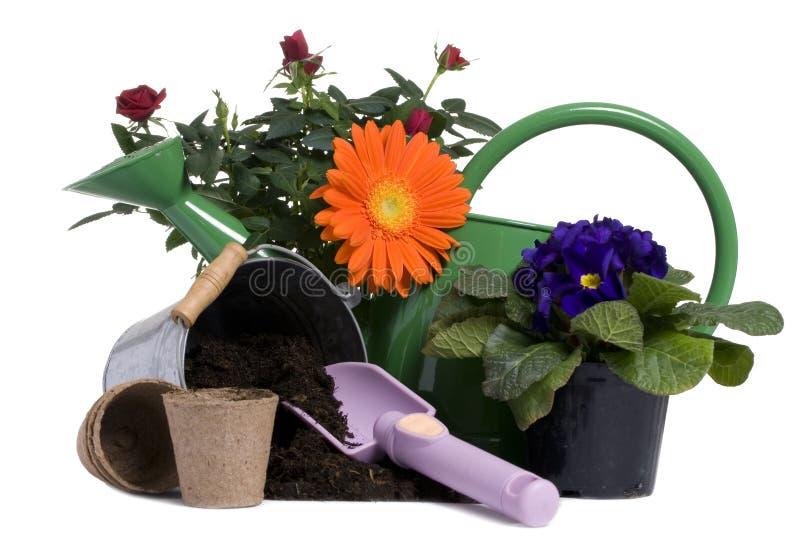 5个园艺工具 免版税库存照片