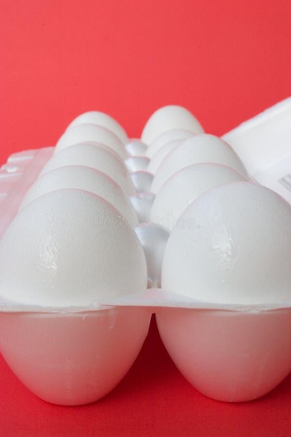 5个鸡蛋 库存照片