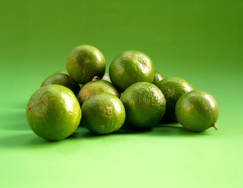 5柠檬 免版税库存图片