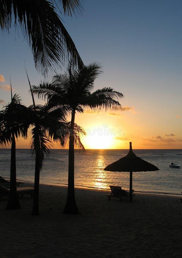 5热带的日落 库存照片