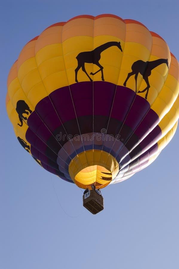 5热的气球 图库摄影