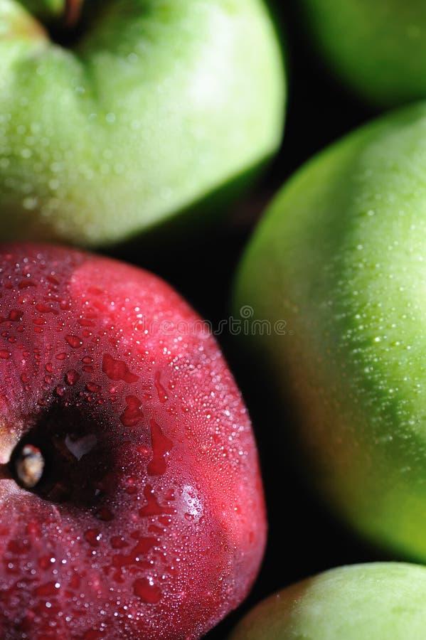 5 μήλα φρέσκα στοκ εικόνες