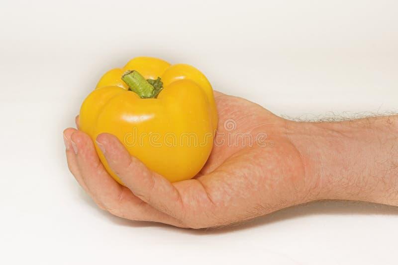 Download 5 πιπέρια στοκ εικόνα. εικόνα από φυτικός, flavouring, πιπέρι - 116385
