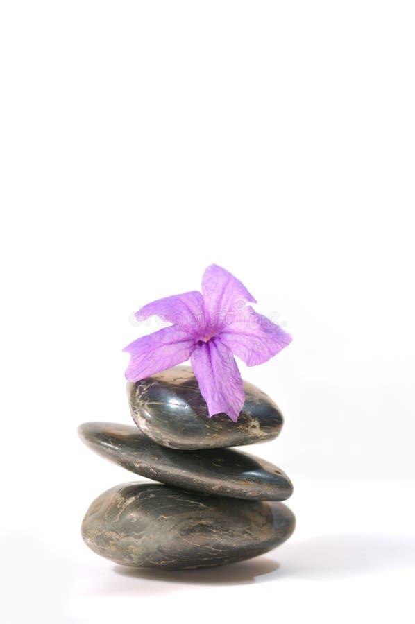 5 σειρές zen στοκ φωτογραφίες