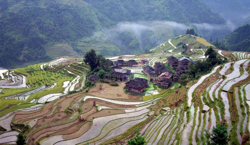 5 китайцев field терраса стоковая фотография