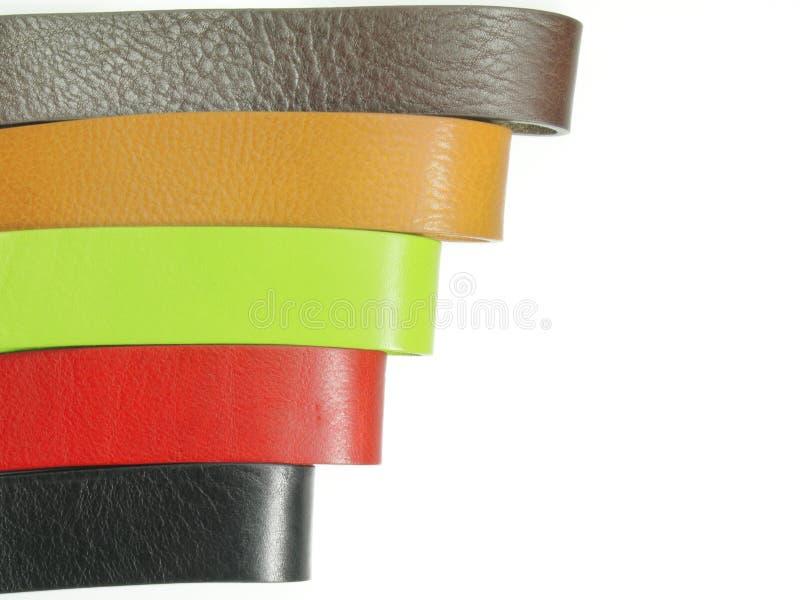 5 кожаных поясов на белизне стоковая фотография rf