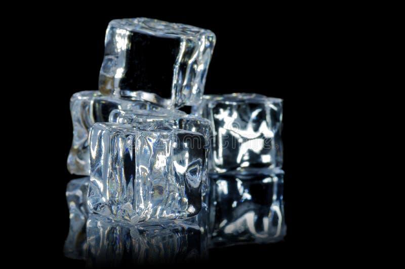 5 9 plamy sześcianów lodowy macro zdjęcia royalty free