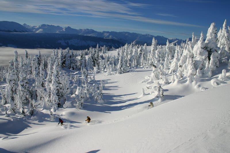 5 backcountry滑雪 免版税图库摄影