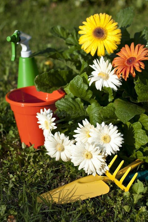 5 blommaträdgårdar royaltyfri bild