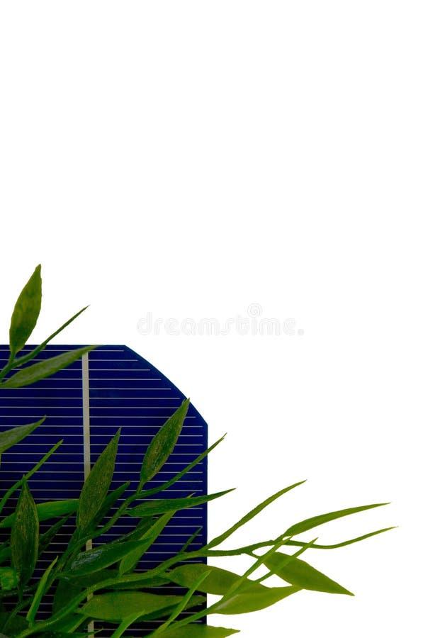 5 de célula solar con las hojas imágenes de archivo libres de regalías
