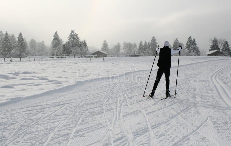 5 de ski photographie stock libre de droits
