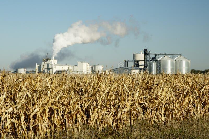 5 etanolu obrazy stock