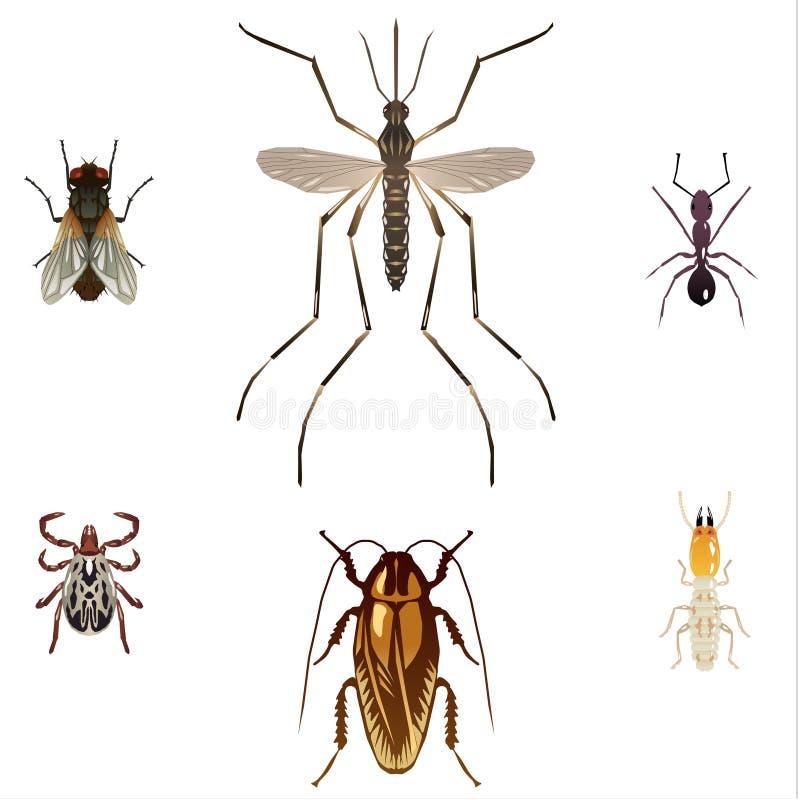 5 insetos da praga ilustração stock