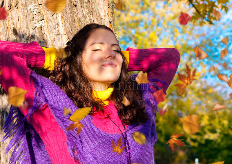 5 jesień kolorowa obrazy royalty free