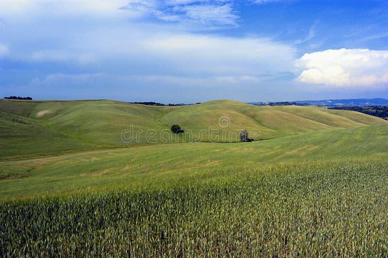 5 krajobrazu fotografia royalty free