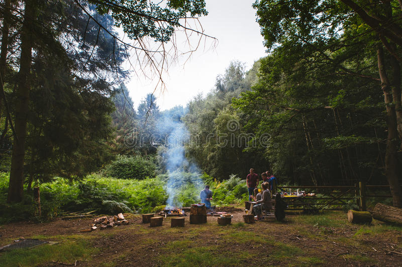 5 Person Doing Campfire In Center On Jungle Free Public Domain Cc0 Image