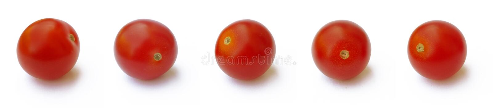 5 Tomatoes royalty free stock photography