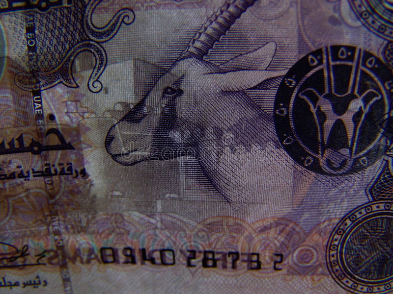 50 dirhams de detalhe imagens de stock royalty free