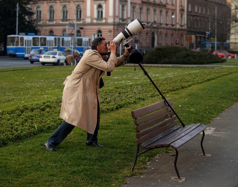 500mm linsfotograf royaltyfria foton
