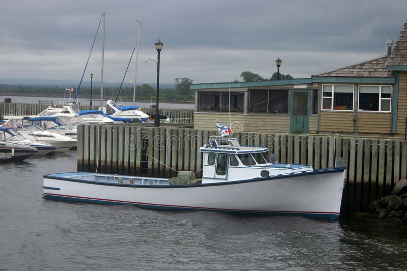 5376 jul06 Nova Scotia royaltyfri foto