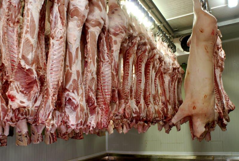 6 świeżego mięsa obraz stock