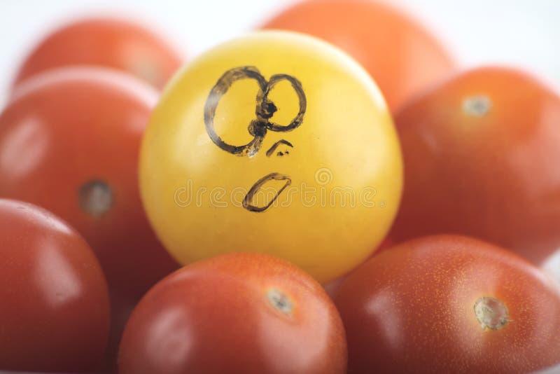 6 ντομάτες κερασιών στοκ εικόνες