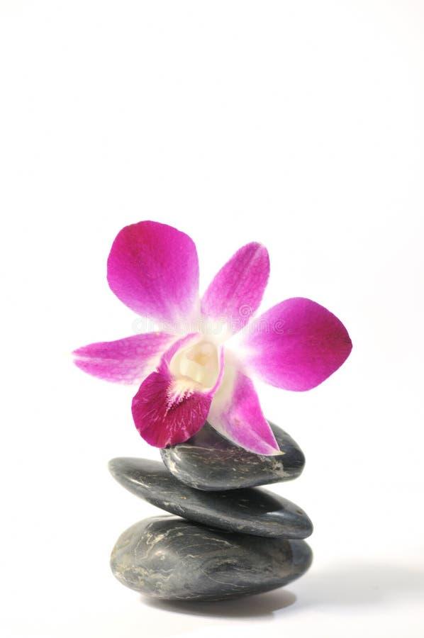 6 σειρές zen στοκ φωτογραφίες