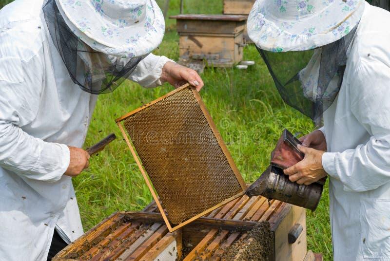 6 beekeepers стоковое фото