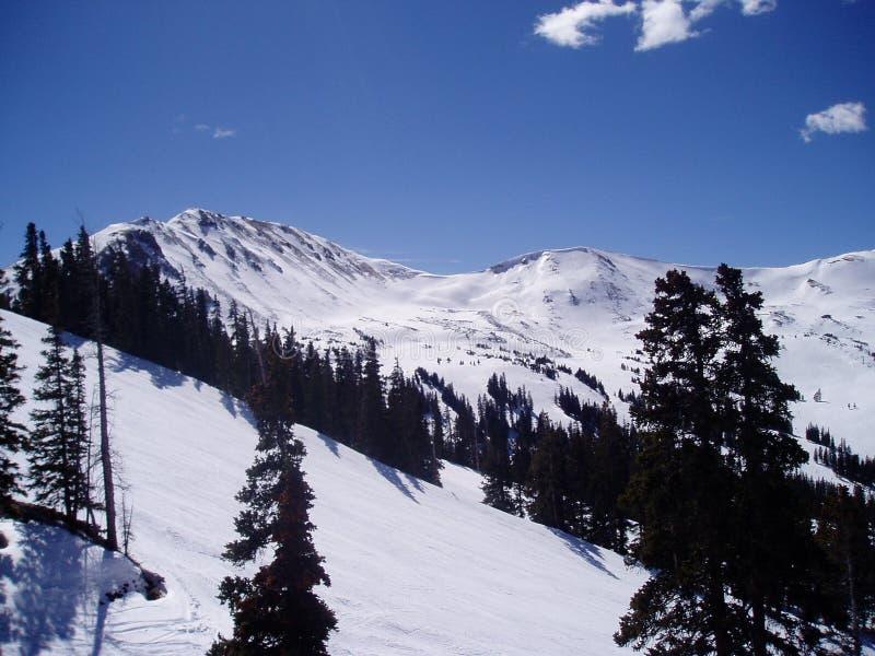 6 Colorado loveland fotografia royalty free