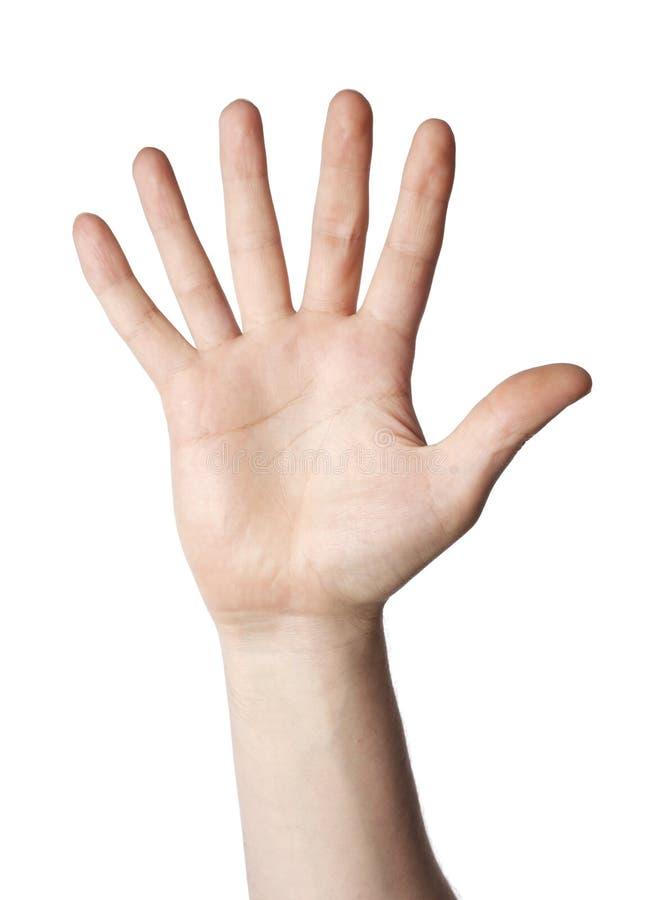 6 Finger stockfotografie