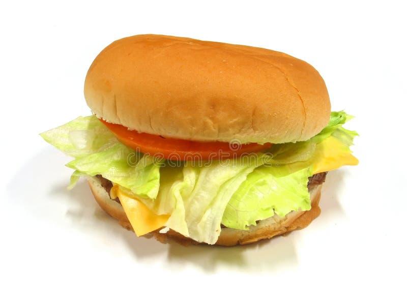 6 Hamburgera Obraz Royalty Free