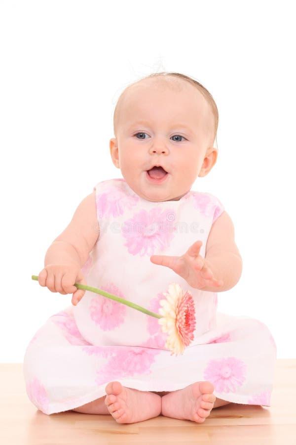 6 meses de bebé con la flor foto de archivo libre de regalías