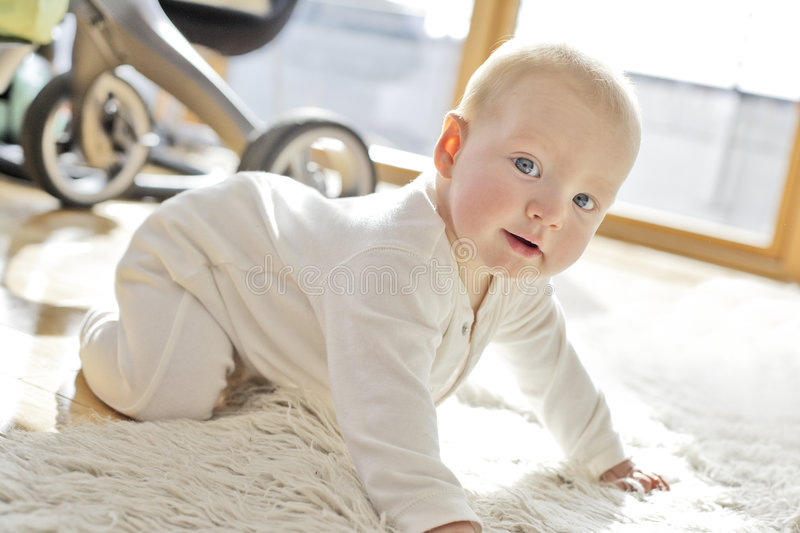 Download 6 month old baby boy stock image. Image of care, intuitive - 1314103