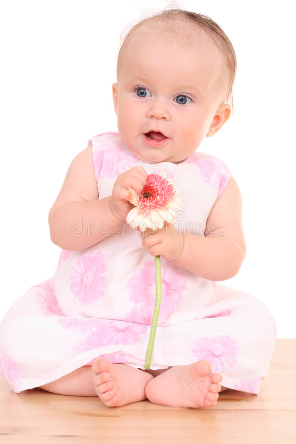 6 months baby girl with flower royalty free stock images