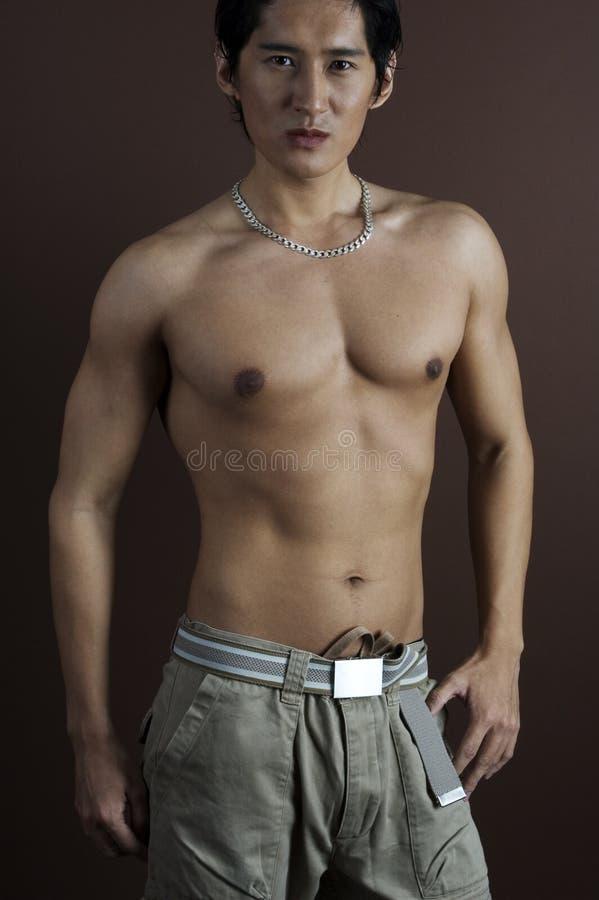 6 musculares fotografia de stock